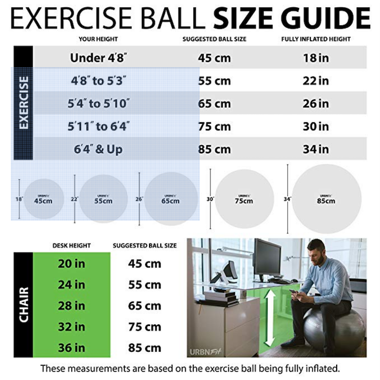 Swiss Exercise Ball size chart for back pain relief Stretching exercises and core exercises
